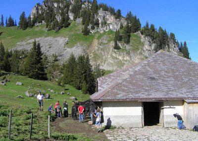 Alphütte Hornberg