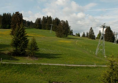 Blick auf den Wanderweg Richtung Horneggli